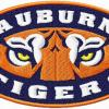 Golloway named next AU base... - last post by WarEagle10