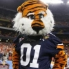 2016 3* TE Landon Rice commits to AU! - last post by AUbritt